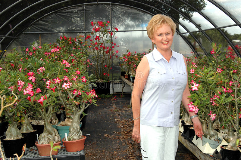 Florist in greenhouse. A florist in a greenhouse choosing plants