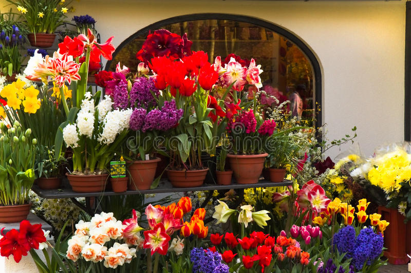 Florist shop with spring flowers stock images