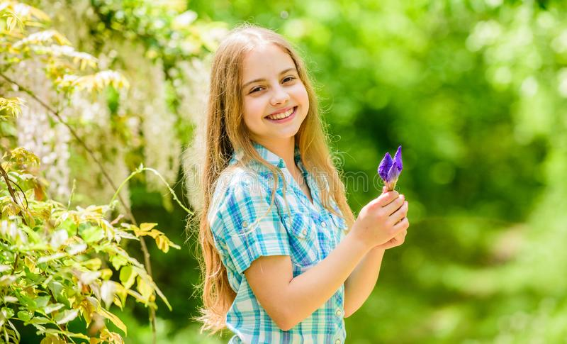 Florist. Spring holiday. Womens day. little girl and iris flower. Natural beauty. Childhood happiness. happy child hold. Iris flower. summer vacation. Green stock photos