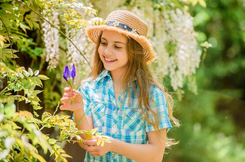 Florist. Spring holiday. Womens day. Natural beauty. Childhood happiness. happy child hold iris flower. summer vacation. Green environment. little girl and stock photography