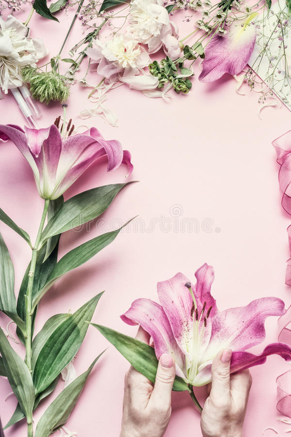 Florist workspace. Female hands holding beautiful pink lily flowers on pastel table with florist decoration equipment, top view, royalty free stock image