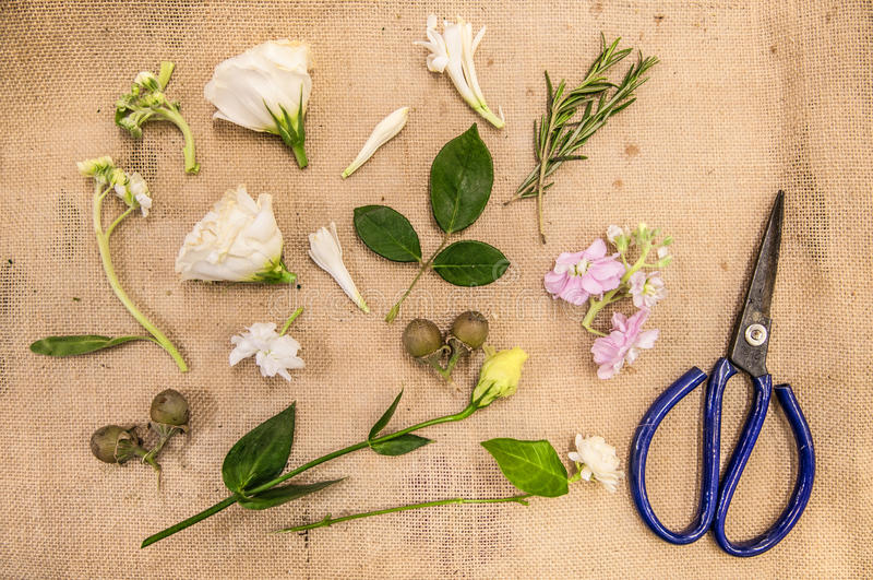 Florista en el trabajo, Florist& x27; equipo de s, centro de flores imagenes de archivo