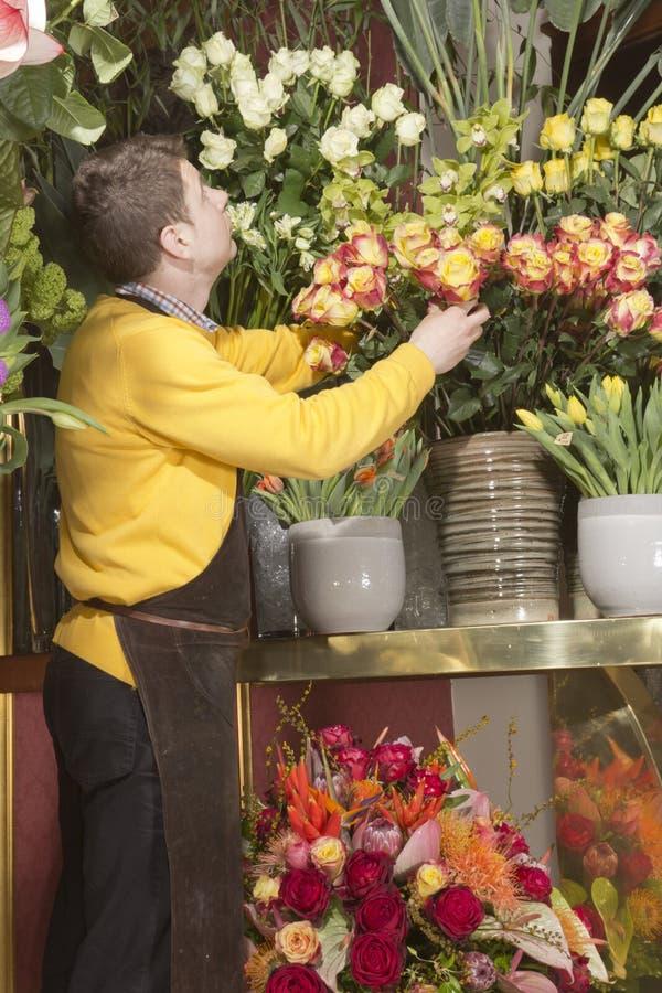 Florista que arranja flores frescas imagem de stock
