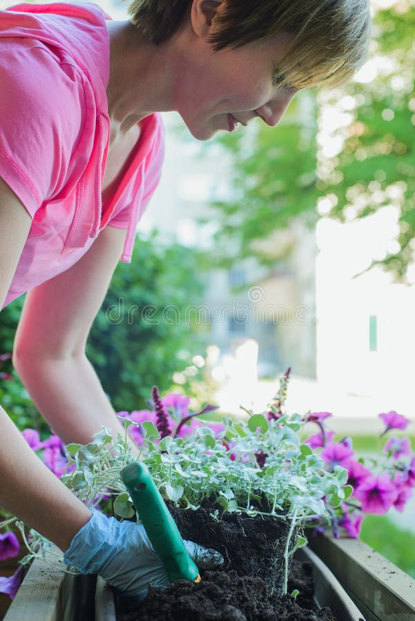 Floristenbetriebsblumen im hölzernen Straßentopf stockfoto