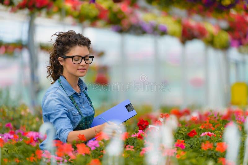 Floristenfrau, die mit Blumen in einem Gewächshaus arbeitet stockbild