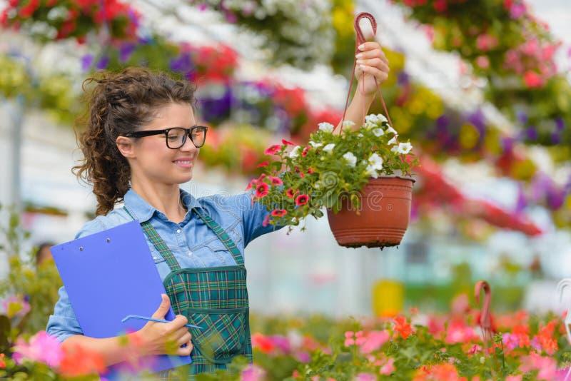 Floristenfrau, die mit Blumen in einem Gewächshaus arbeitet lizenzfreie stockbilder