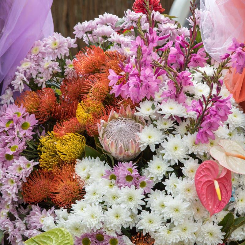 Floristic διακόσμηση ομορφιάς με τα ζωηρόχρωμα τροπικά λουλούδια στοκ φωτογραφία
