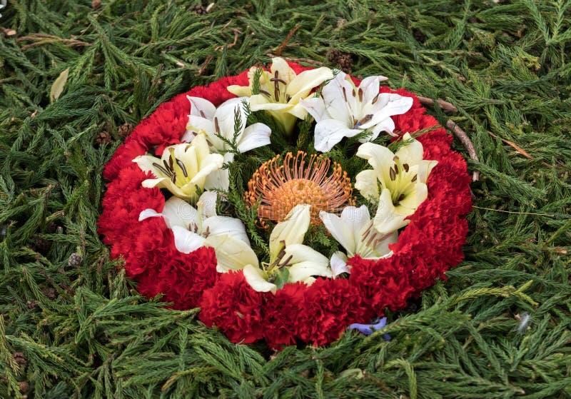 Floristic διακόσμηση ομορφιάς με τα ζωηρόχρωμα τροπικά λουλούδια στοκ φωτογραφίες με δικαίωμα ελεύθερης χρήσης