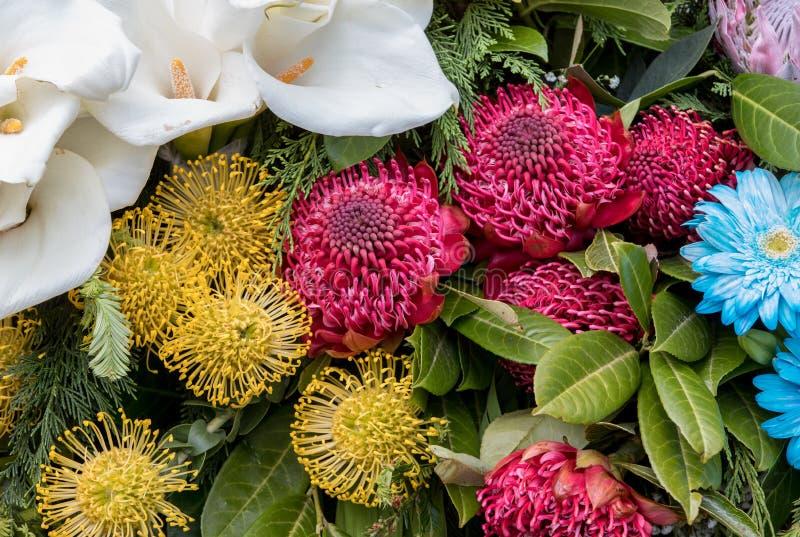 Floristic διακόσμηση ομορφιάς με τα ζωηρόχρωμα τροπικά λουλούδια στοκ εικόνες με δικαίωμα ελεύθερης χρήσης
