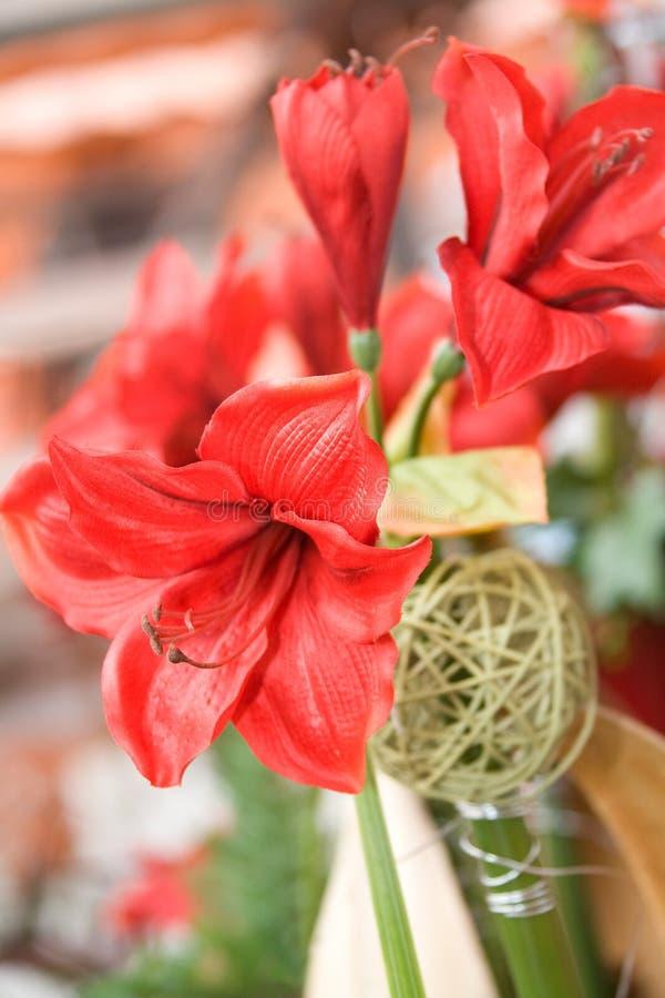 floristic bakgrund arkivbild