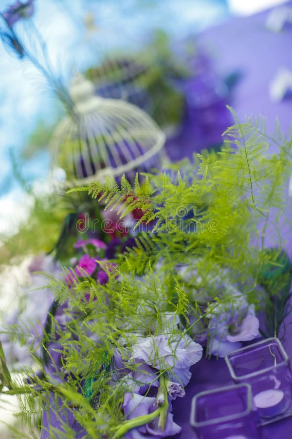 Floristics 新娘花束和钮扣眼上插的花与一条绿色丝带在黑暗的木背景 花:银莲花属zamiokulkas 库存图片