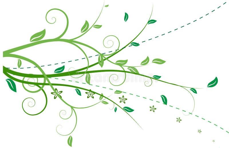 Floristisch geïsoleerdf ornament royalty-vrije illustratie