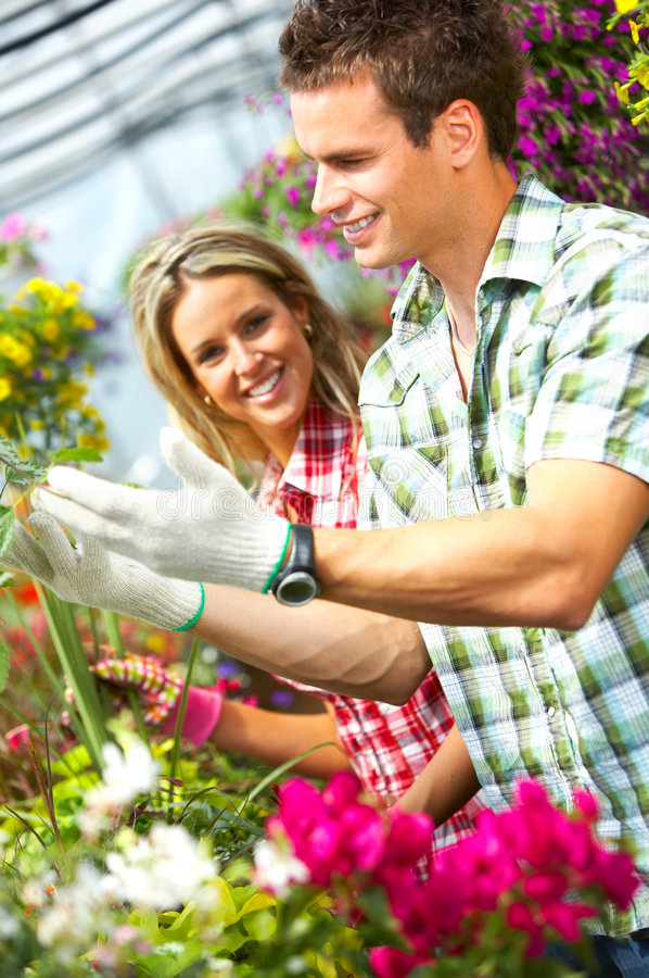 Download Florists stock image. Image of business, hold, colorful - 5305319