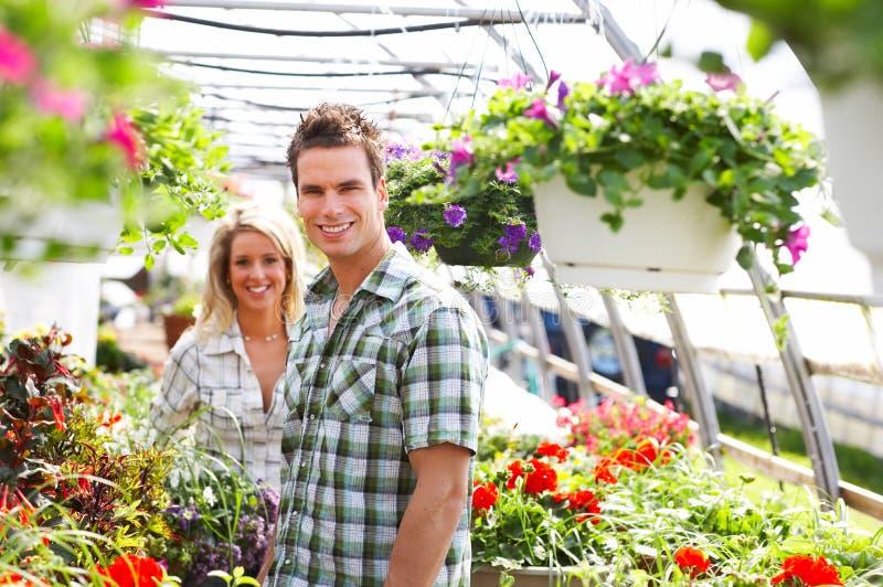 florists стоковое изображение