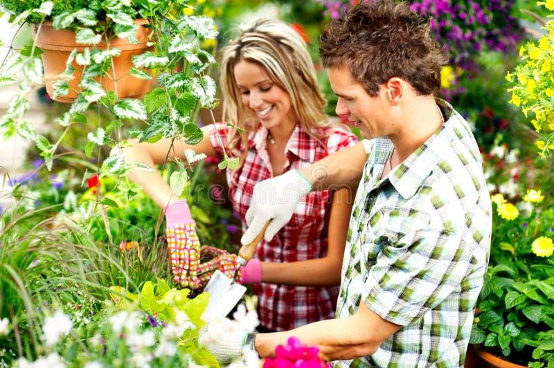 florists стоковые фото