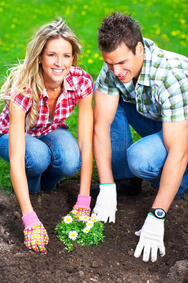 Download Florists stock image. Image of business, gardener, horticulture - 9569803