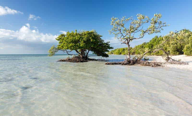 Floryda kluczy Anne plaża obrazy stock