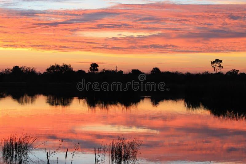 Floryda wschód słońca zdjęcie stock