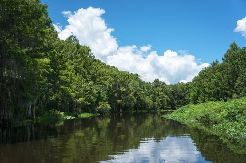 Floryda zalewiska bagna wycieczka turysyczna zdjęcie stock
