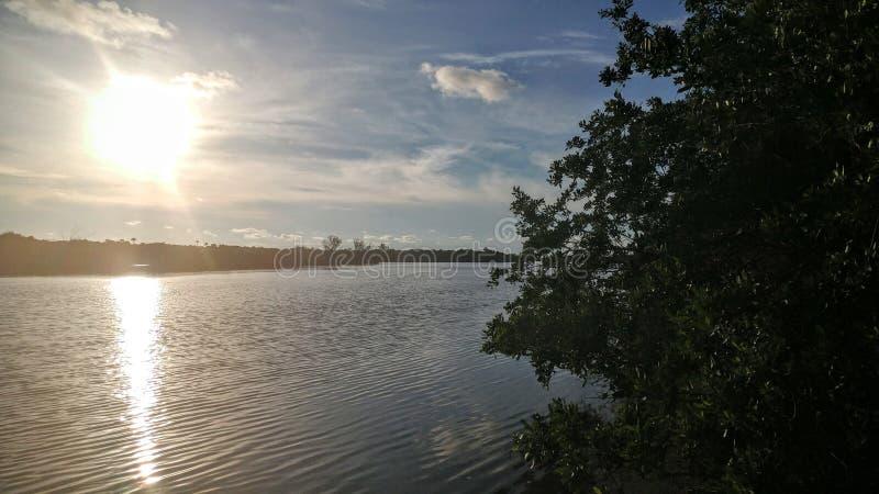 Floryda zatoka obrazy royalty free