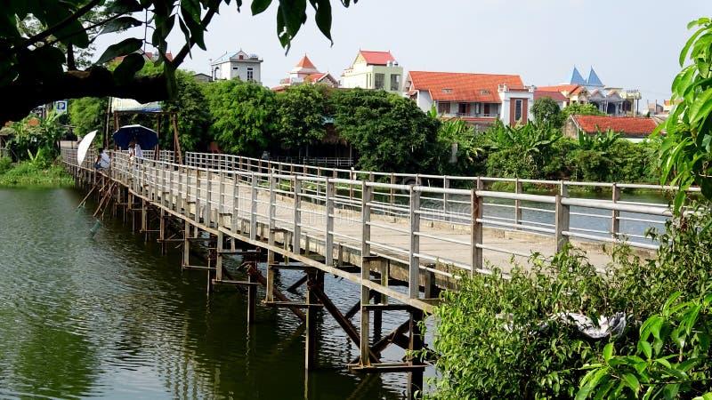 Floss-Brücke angeschmiegt unter Baum-Schattenbild lizenzfreie stockfotos