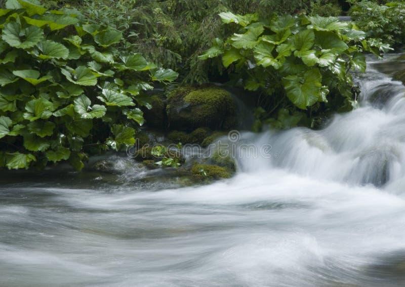 Download Flot photo stock. Image du actuel, poli, montagnes, été - 2133790
