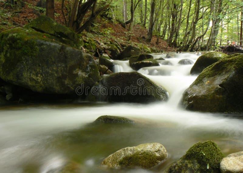 Flot de fleuve de montagne images stock