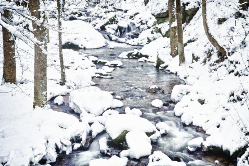 Flot de l'hiver image stock