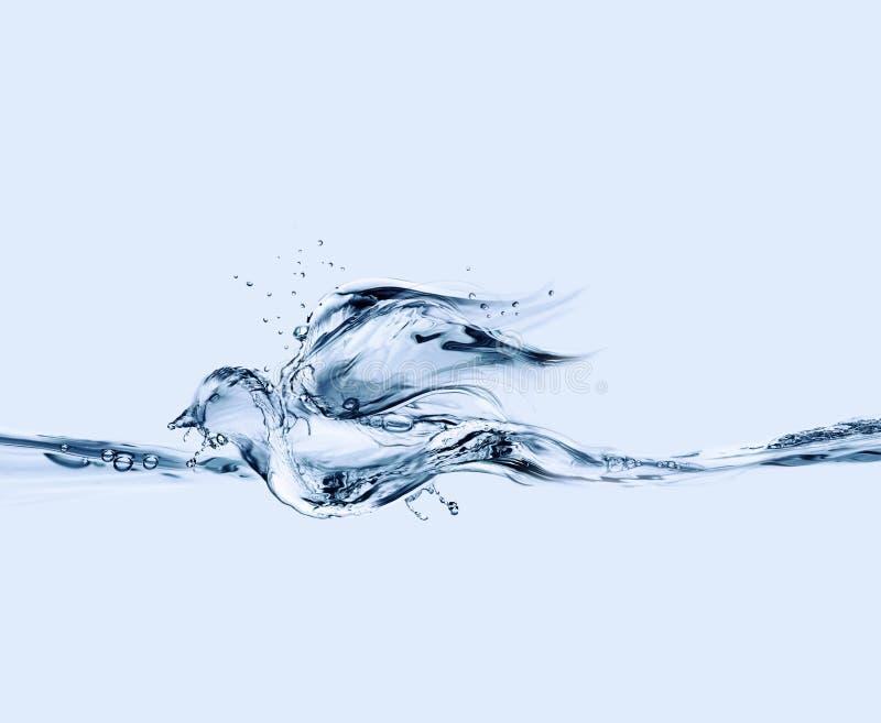Flotación del pájaro de agua imágenes de archivo libres de regalías