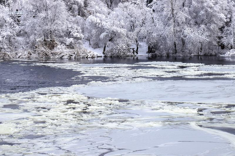 Flotadores blancos del hielo en el río en el fondo de los árboles cubiertos con paisaje del invierno de la nieve y de la escarcha foto de archivo libre de regalías