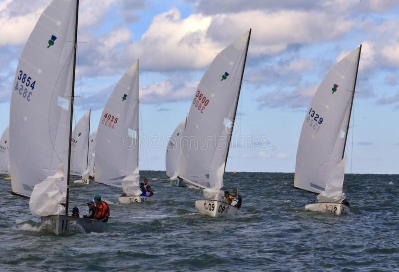 Flotilla of racing boats. Pro sailing boats enter the open water at the United States Sailing Associations Championship of Champions Title at Edgewater Yacht royalty free stock image