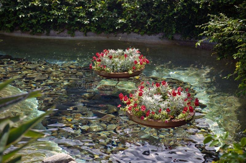 flottörhus blommakrukar royaltyfria foton
