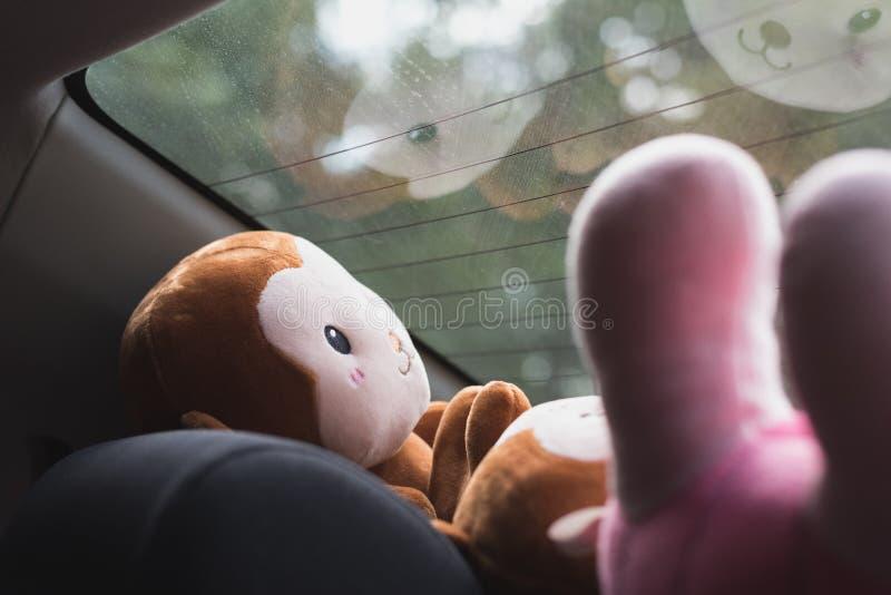 Flott leksaker framme av det bakre fönstret av en bil royaltyfria bilder