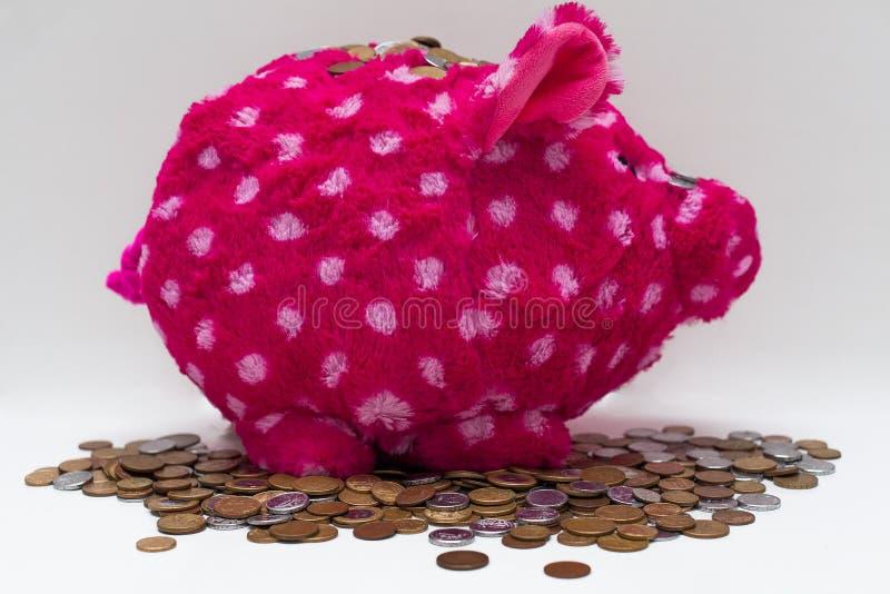 Flott rosa spargris och mynt royaltyfri bild