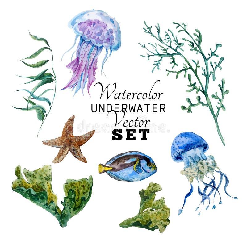 Flottauppsättning av den tropiska fisken för vattenfärgvektor vektor illustrationer