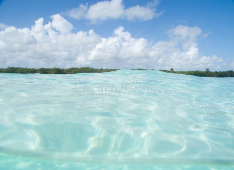 Flottement en mer des Caraïbes photographie stock