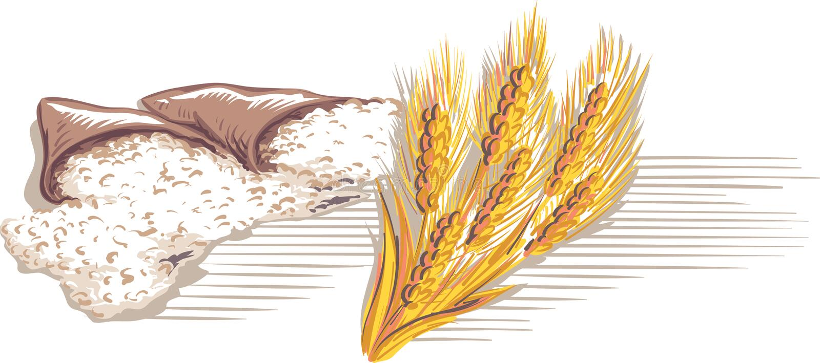 Flour bags and a bunch of ripe ears. Of wheat flour bags and a bunch of ripe ears vector illustration