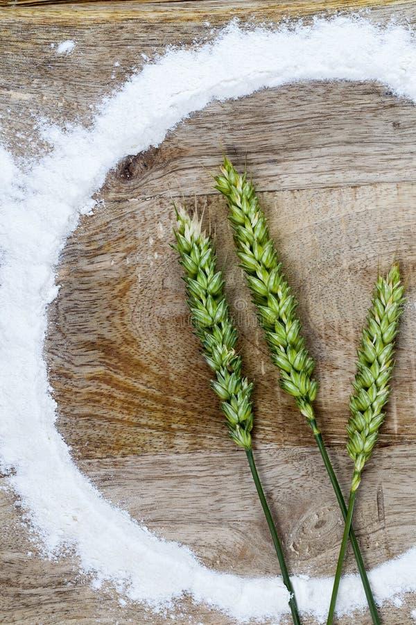 flour and wheat stock photo