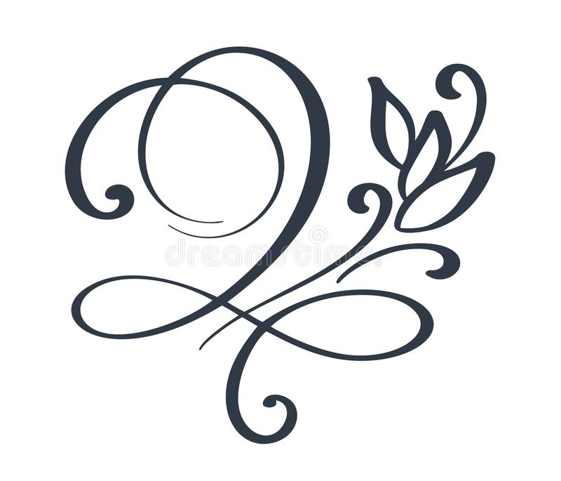 flourish swirl ornate decoration for pointed pen ink calligraphy rh dreamstime com vector flourishes free download vector flourishes png