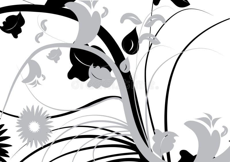 flourishes украшения бесплатная иллюстрация