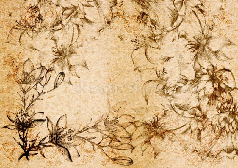 Flourishornament do vintage em uma parte traseira velha do papel. ilustração do vetor