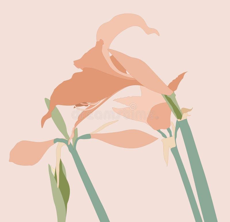 Flower stock illustration