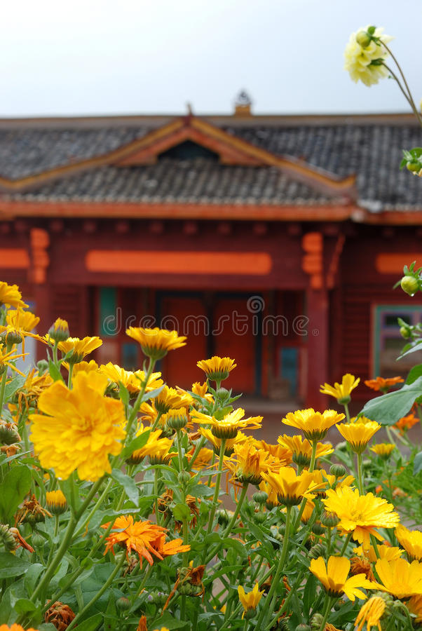 Flower. Front Chinese tradition construction fresh flower stock photos
