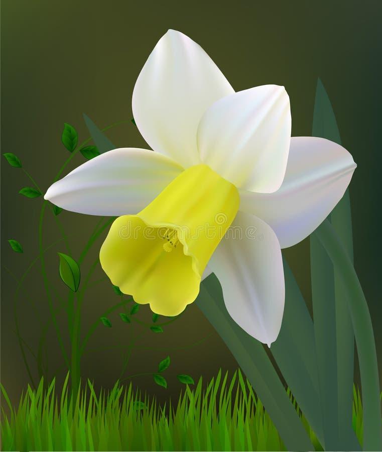 Flower. Abstract art design flower royalty free illustration