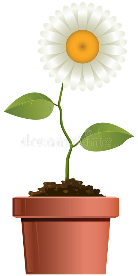 Download Flower stock vector. Image of leaf, isolated, painting - 14866420