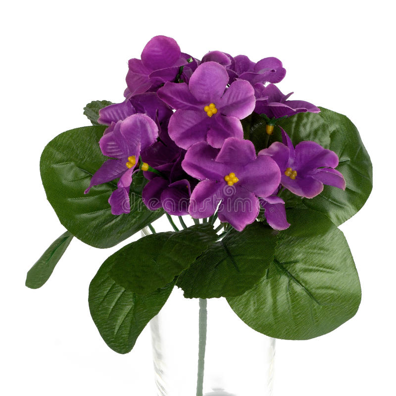 Download Flower stock photo. Image of garden, natural, color, flavor - 15527360