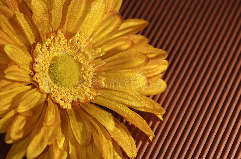 Download Flower Stock Photography - Image: 2298482