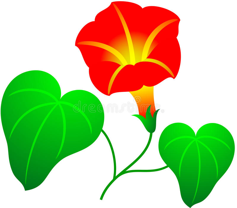 Download Flower stock vector. Illustration of plant, natural, agriculture - 23876355