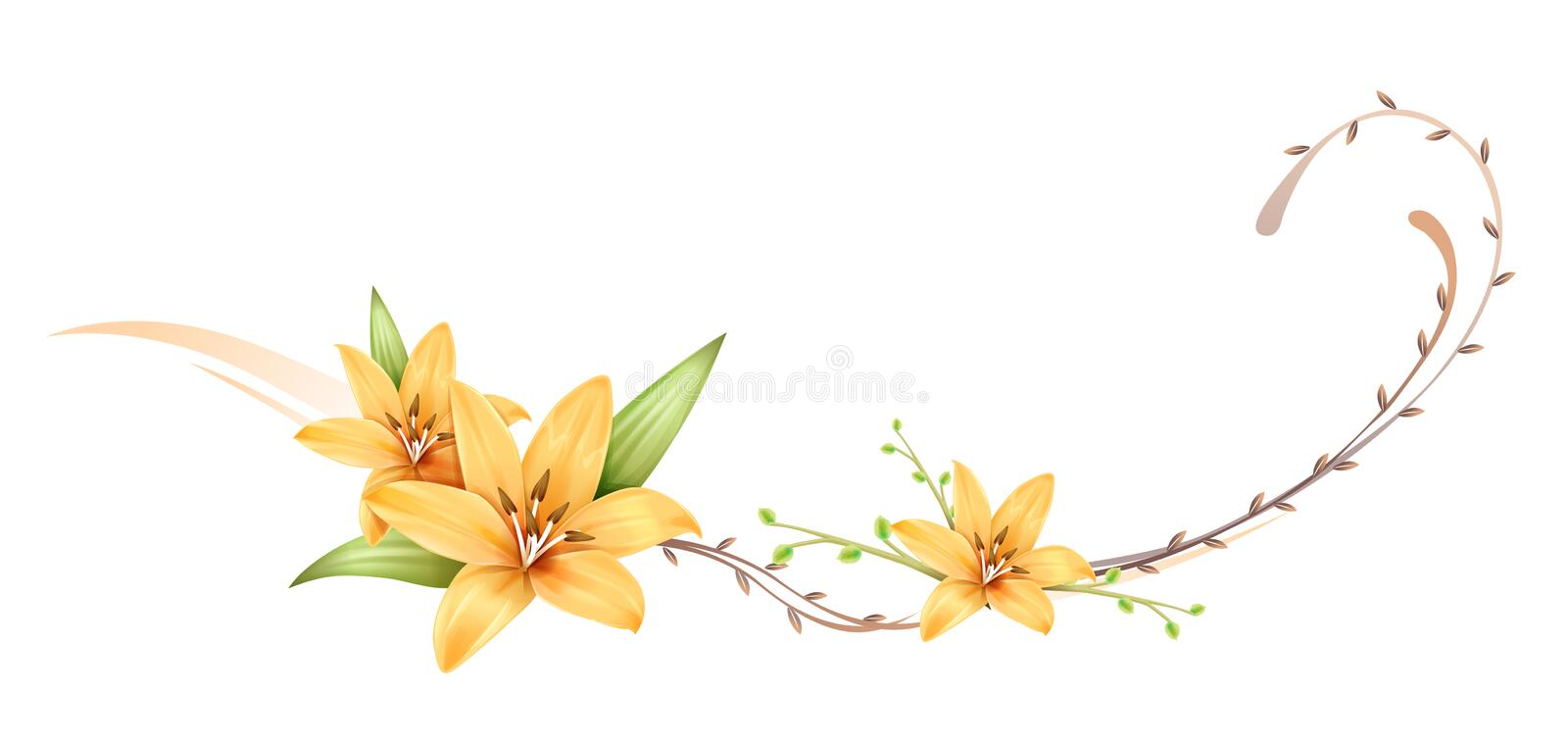 Flower. Illustration drawing of a group of orchids royalty free illustration