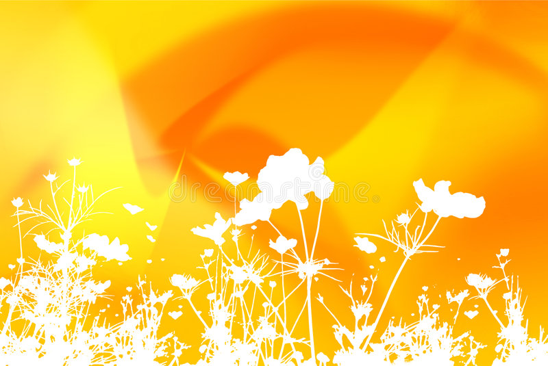 Flower abstract textures and backgrounds royalty free stock photos